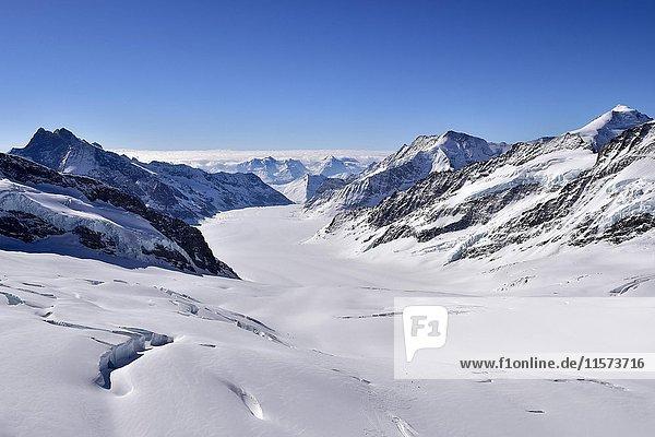 Aletschgletscher mit Schnee  Ausblick vom Jungfraujoch  Wallis  Schweiz  Europa