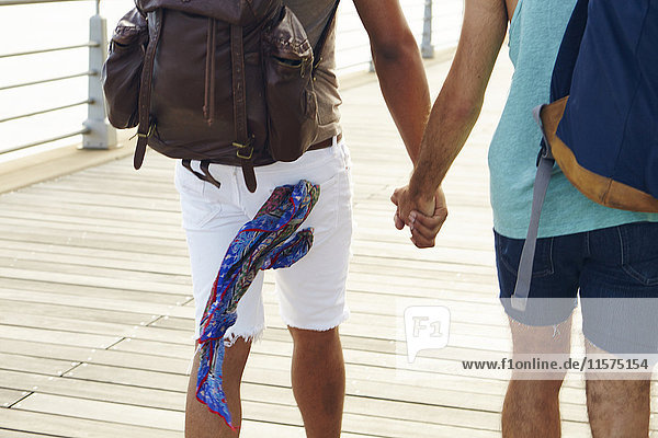 Rear view of male couple holding hands whilst strolling on boardwalk