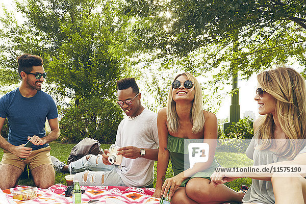 Five adult friends picnicking in park