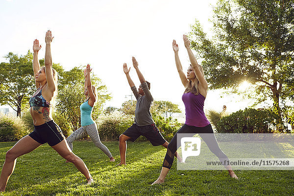 Male and female adults practicing yoga in park  in warrior 2 pose