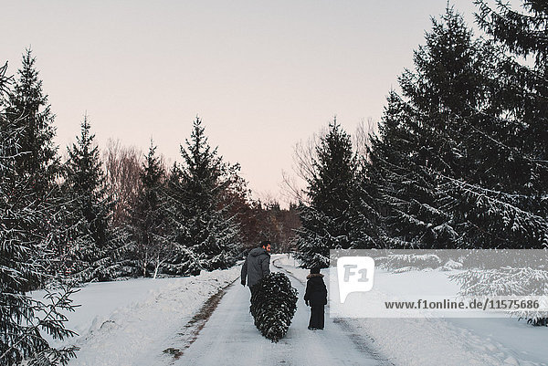 Vater und Tochter holen sich ihren eigenen Weihnachtsbaum