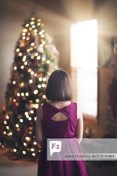 Young girl looking at decorated christmas tree  rear view