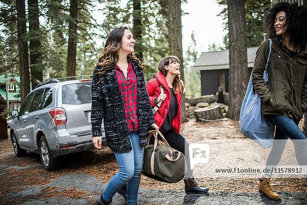 Drei Freunde  die vom Auto weggehen und Wochenendtaschen tragen.