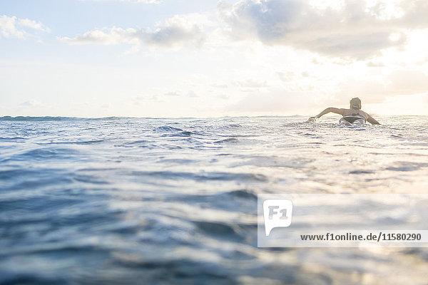 Rückansicht einer Frau  die auf einem Surfbrett im Meer paddelt  Nosara  Provinz Guanacaste  Costa Rica