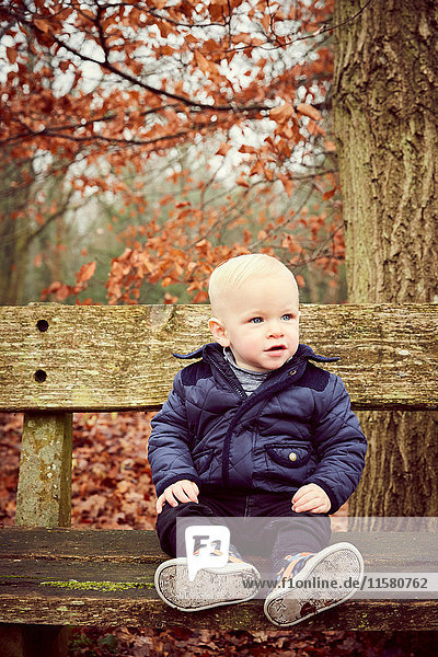 Male toddler sitting on park bench