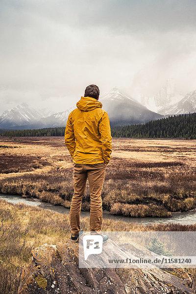 Mann stehend  Blick auf Ansicht  Rückansicht  Kananaskis Country  Bow Valley Provincial Park  Kananaskis  Alberta  Kanada