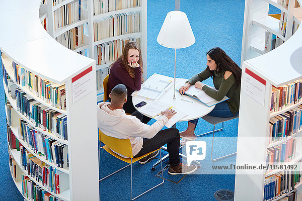In der Bibliothek arbeitende Universitätsstudenten