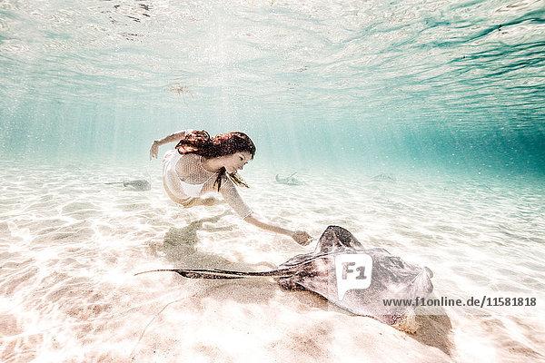 Weibliche Freitaucherin schwimmt mit Stachelrochen auf dem Meeresboden