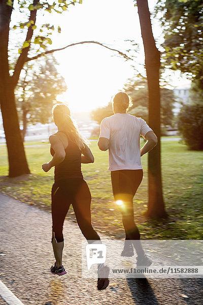 Rückansicht des Paares beim Joggen auf dem Fußweg im Park bei Sonnenaufgang