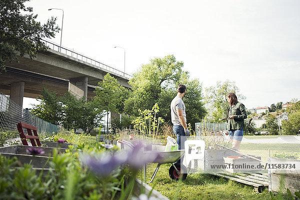 Mittleres erwachsenes Paar beim gemeinsamen Gärtnern im Stadtgarten
