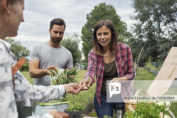 Frau erhält Kreditkarte von Kundin im Gemüsegarten