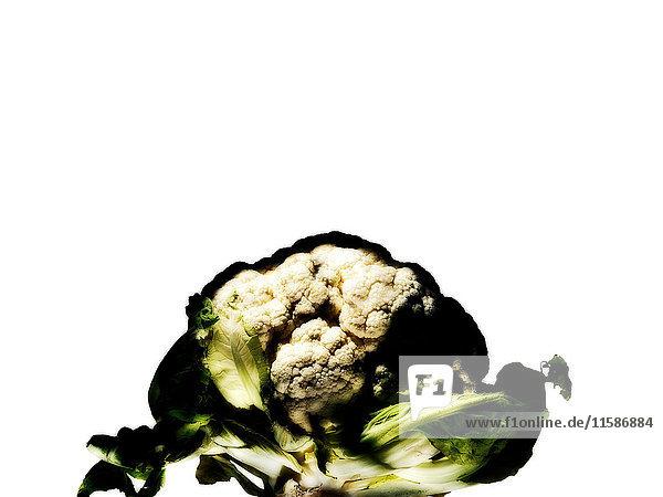 Blumenkohl