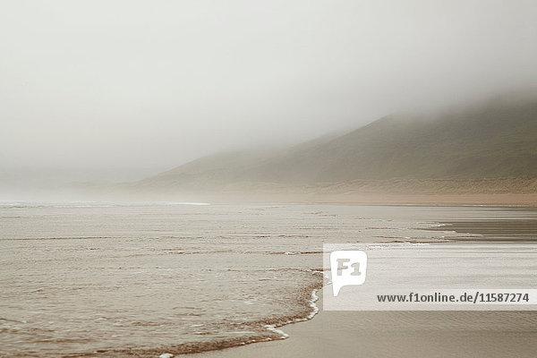 Wellen spülen an nebligen Strand