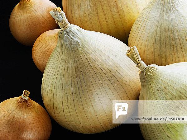 Eine Gruppe von kleinen und großen Zwiebeln