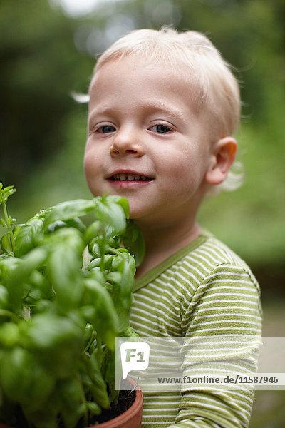 Kleinkind Junge trägt Topfpflanze