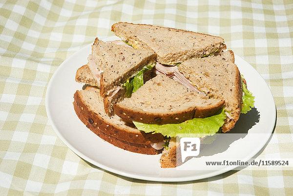 Teller mit Sandwiches auf Picknickdecke