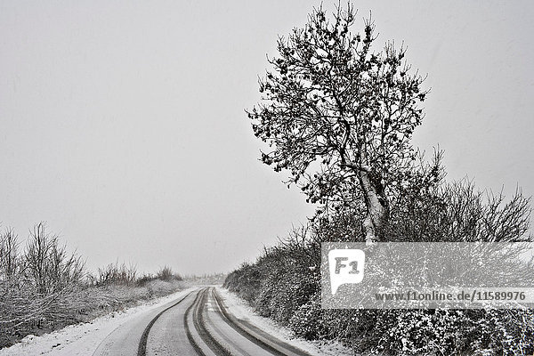 Winding road covered in snow
