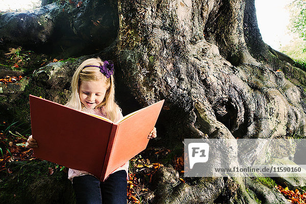 Young girl reading a book in a woodland