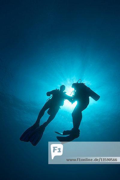 Zwei männliche Taucher im Meer vor Sansibar