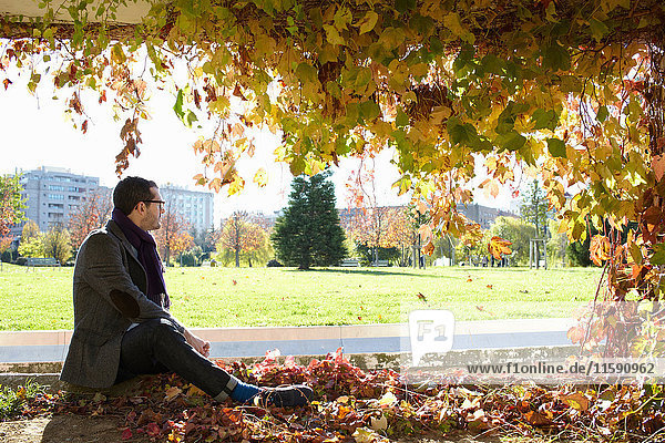 Man sitting in autumn leaves in park