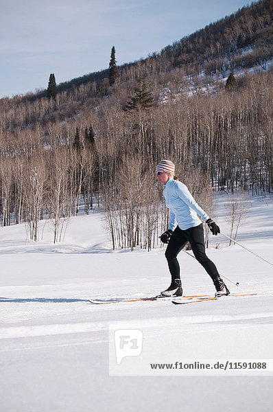 Cross country skier on snowy field