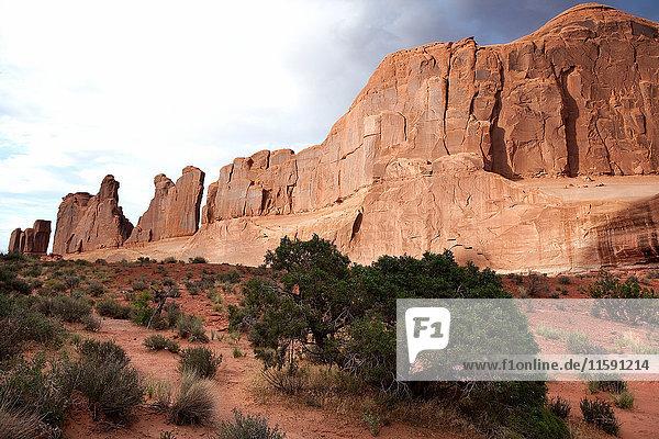 Rote Felsen von Moab  Utah  USA