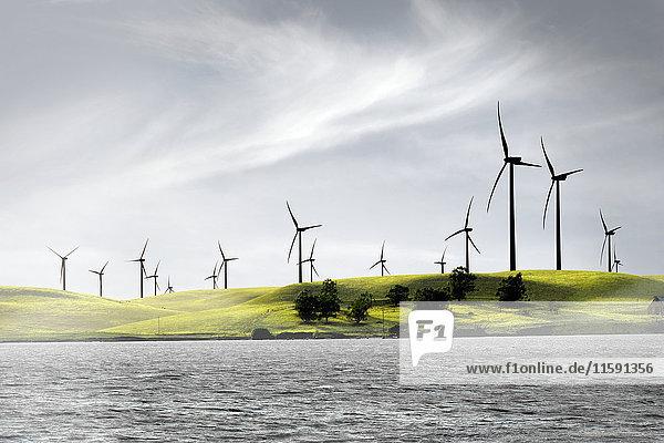 Windpark im kalifornischen Delta  Kalifornien  USA