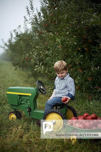 Junge auf Spielzeug-Traktor