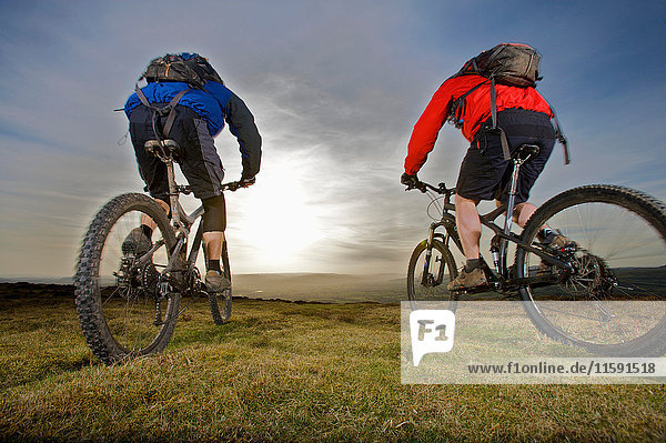 Two mountain bikers riding together.
