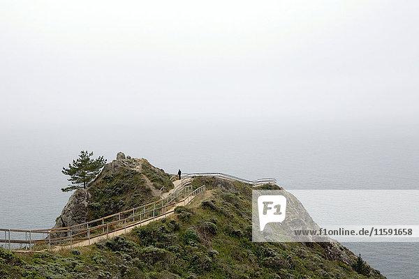 Mann mit Blick,  Muir Beach Overlook,  Golden Gate National Park,  Kalifornien,  USA