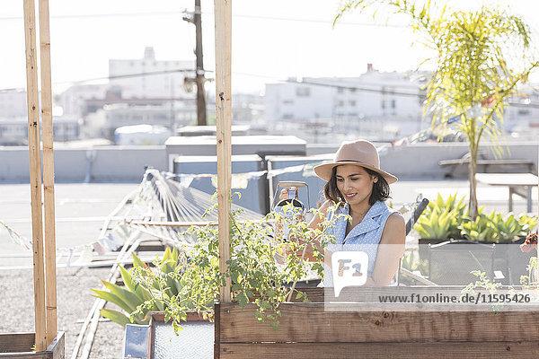 Frau beim Gießen ihres Dachgartens