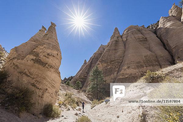 USA  New Mexico  Pajarito Plateau  Sandoval County  Kasha-Katuwe Zeltfelsen National Monument  Wüstental mit bizarren Felsformationen