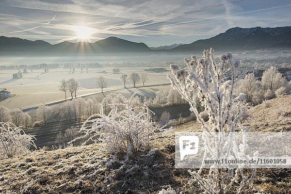 Deutschland  Bayern  Grossweil  Sonnenaufgang im Winter Deutschland, Bayern, Grossweil, Sonnenaufgang im Winter