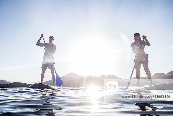Couple standing on paddleboards in river