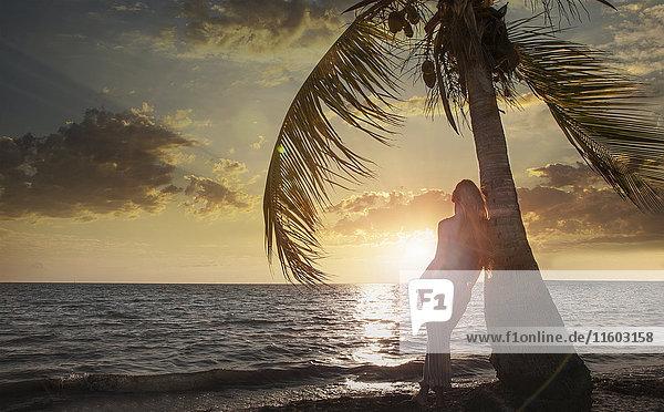 Caucasian woman leaning on palm tree near ocean