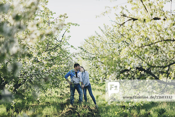 Caucasian couple holding hands under flowering trees