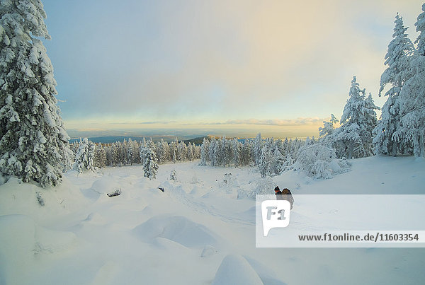 Caucasian man hiking in snowy forest at sunset