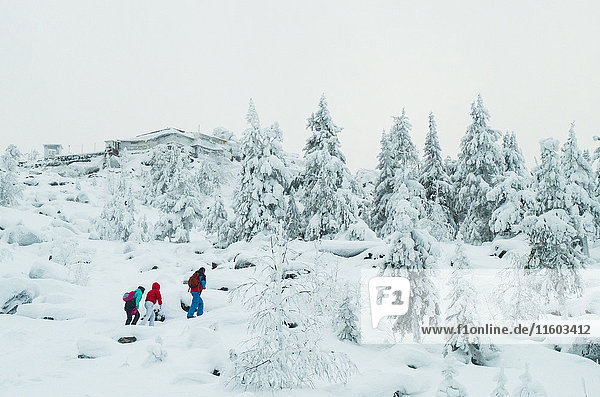 Caucasian friends hiking in snowy forest