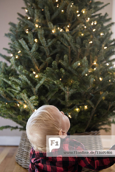 Caucasian baby boy looking up at Christmas tree