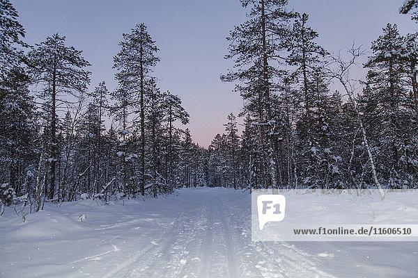 Blick auf Straße und Bäume in schneebedeckter Landschaft gegen den Himmel bei Sonnenuntergang