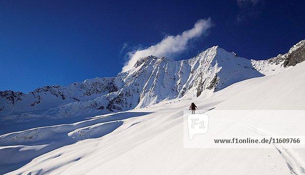 A man skiing uphill on the Disgrazia glacier  Valmalenco  Valtellina  Lombardy  Italy.