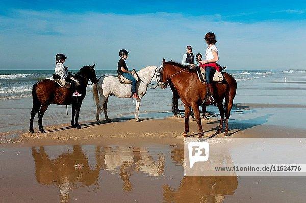Equestrian tourism on the beach  Doñana Natural Park  Matalascañas  Huelva province  Region of Andalusia  Spain  Europe.