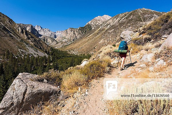 Backpacker on the Big Pine Lakes Trail  Inyo National Forest  Sierra Nevada Mountains  California USA.