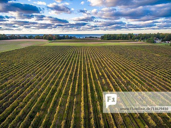 Farm in Erie County Pennsylvania.