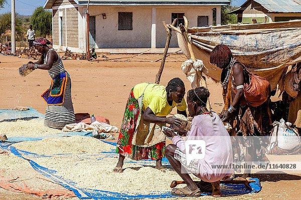Hamer Tribeswomen Buying Grains At The Turmi Monday Market,  Turmi,  Omo Valley,  Ethiopia.