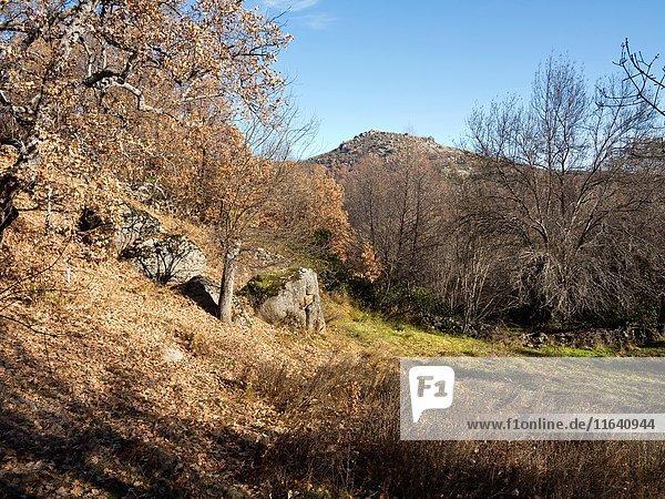 Peralejo hill in Navarrevisca. Avila. Castilla Leon. Spain. Europe.