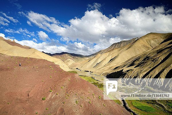 India  Jammu and Kashmir State  Himalaya  Ladakh  Hemis National Park  orange and pink mountains near the village of Rumbak