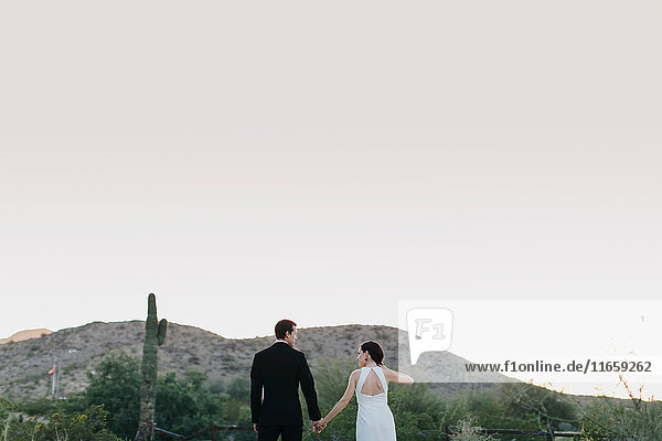 Bride and groom in arid landscape  holding hands rear view