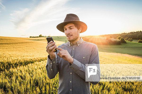 Mid adult man  standing in field  using smartphone  Neulingen  Baden-Württemberg  Germany