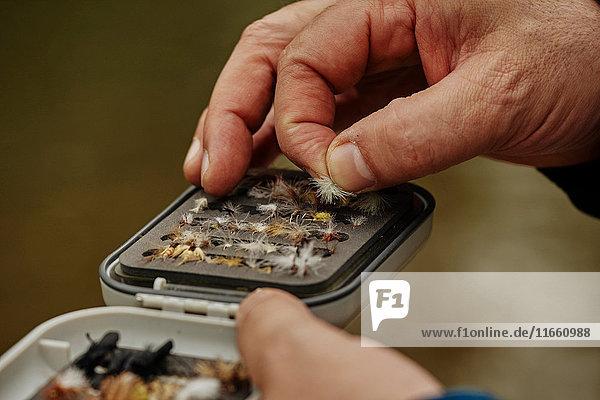 Mann wählt Angelfliege aus Vorratsbehälter aus  Nahaufnahme